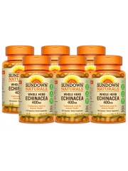 Sundown Naturals Echinacea 400mg, 100 caps, Pack of 6