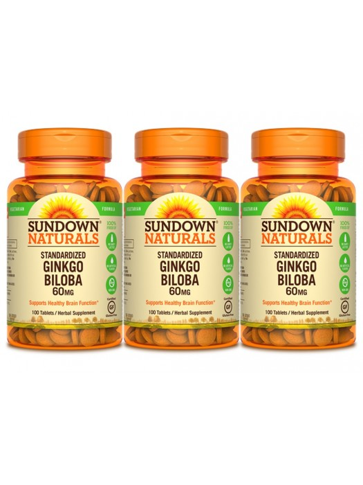 Sundown Naturals Ginkgo Biloba 60mg, 100 tabs, Pack of 3
