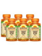 Sundown Naturals Ginkgo Biloba 60mg, 200 tabs, Pack of 6