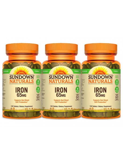Sundown Naturals Iron Ferrous Sulfate 65mg, 120 tabs, Pack of 3