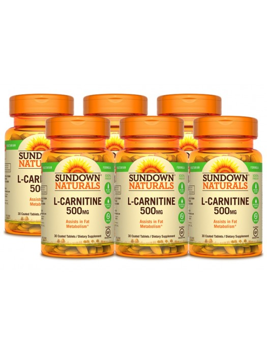 Sundown Naturals L-Carnitine 500mg, 30 tabs, Pack of 6